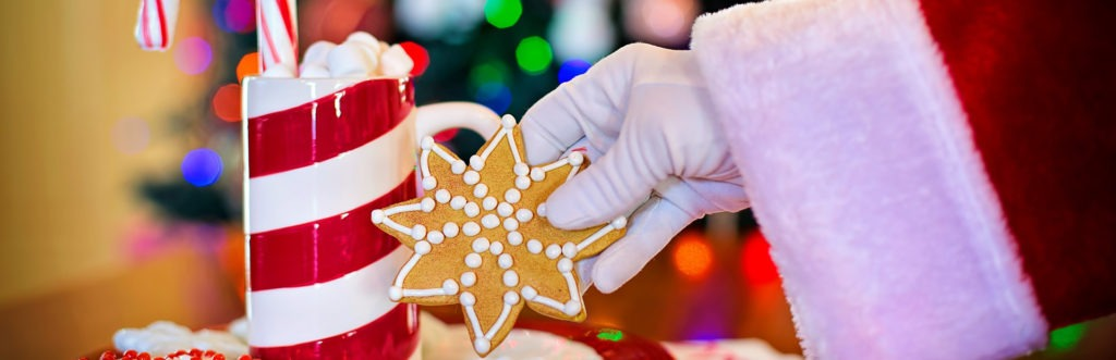 "A photo image of a plate of Christmas cookies and a mug of cocoa with Santa's white-gloved hand taking a cookie from the plate used as the feature image for a blog post titled, ""WordPress Maintenance and Support Holiday Specials."""